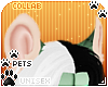 [Pets] Frankie | ears v4