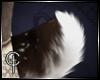 [CVT]Vieve's Tail