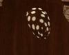 Mrs Bears Tail -animated