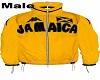 YellowJamaicaJacket Male