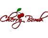 Cherry Bomb Kini