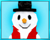Christmas Snow Man Pet