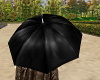 Umbrella for Male Avatar