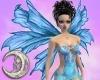 Blue Pink Wings/F