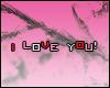 (*Par*) I Love You!