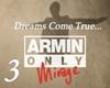 Armin 3