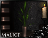 -l- (EOD) Plant