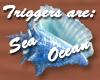 Blue Seashell Marker