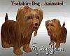 Yorkshire Dog Animated