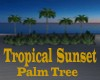 Tropical Sunset Palms