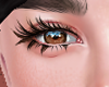 Lashes  xin 01