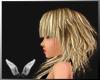 [Sc] Hisae Blonde Light