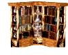 snazzy bookshelf