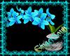 Enchanting Orchids
