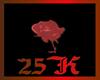 SPRING SUPPORT 25K