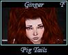 Ginger Pig Tails F