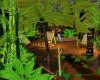 Jungle Paradise