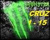 CRUISE (FL&GA LINE)