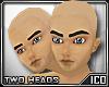 ICO II Heads