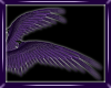 AD 4AngelWingsPurp3