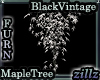 [zllz]Black White Maple1