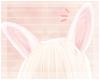 <3 Bunny Ears V2