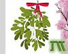Mistletoe Head Sign