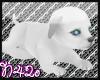 [N42o] My Little Puppy
