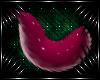 [K] Maia Tail V2