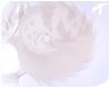 Nyx | Tail 6