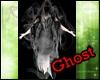 Light Ghost Fly DJ