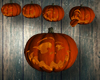 4 Varition Of Pumpkins