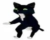 Cute BlkWht Should Kitty