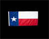Texas Flag for Wall
