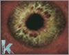Marburg - Eyes