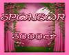 3000k Sponsor