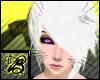 [B] Black Whiskers M V2