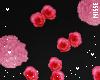 n| Flowers Wall
