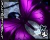 [L] Purple Butterfly