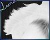 *L Mable's Shoulder Fur