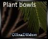 (OD) Baran plantbowls