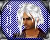 Zexion Hair Silver