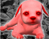 [AM]Cute Red Dog