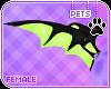 [Pets] Hana | wings
