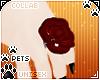 [Pets]Frankie |rose ring