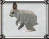 ~E- Winter Rabbit