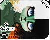 [Pets] Frankie | Pasti