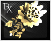 =DX= Derivable Bouquet