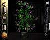 ~V~Passions Tree Planter
