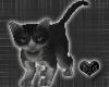 *-*Cute Black Cat Pet